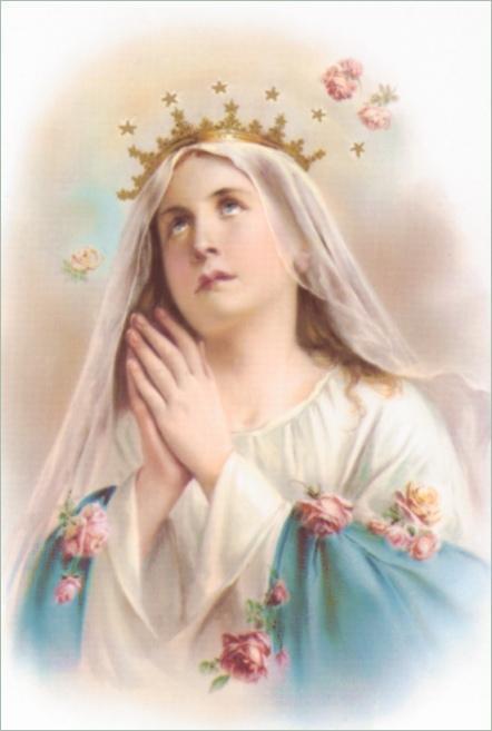 Maria lanhuong 1 1 hinh anh ve duc me maria